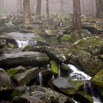 Foggy Mountain Creek by suddath