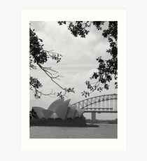 Sydneysiders  Art Print