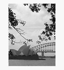 Sydneysiders  Photographic Print