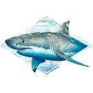 Great white shark distressed design by David Pearce