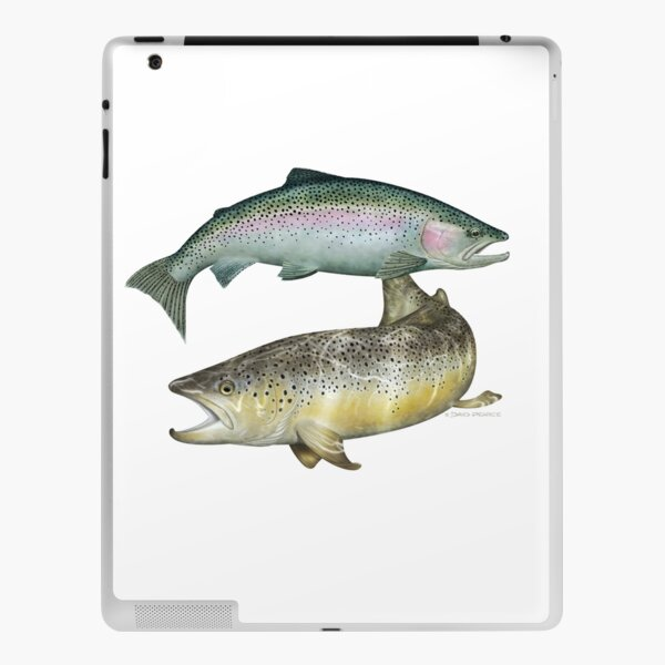 Brown Trout & Rainbow Trout iPad Skin