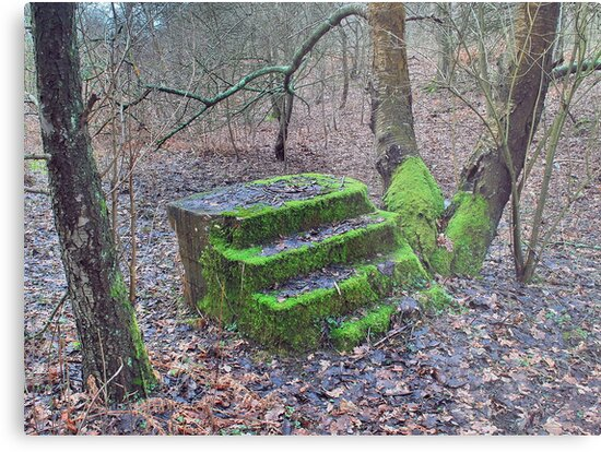 Four steps by relayer51
