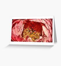 Peonie Greeting Card