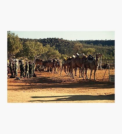 Army camel train Photographic Print