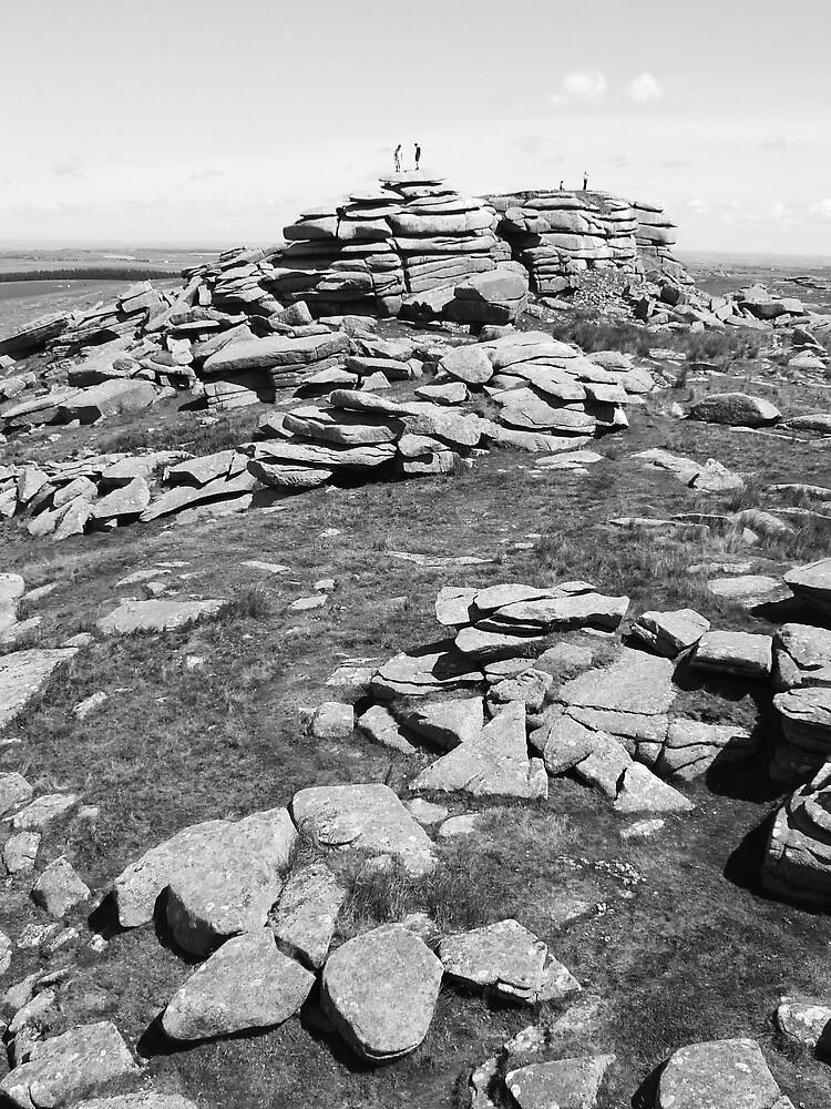 Bodmin Moor by mattslinn