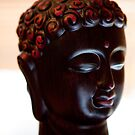 The Face of Buddha  by Josh Prior