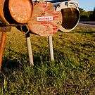 Country Letterbox by Josh Prior