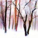 Wonderland in Snow by Jessica Jenney
