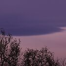 Blue magenta contrast by christopher363