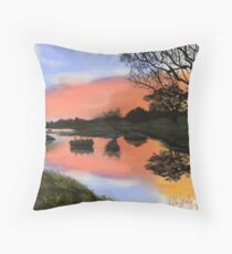 Rest Here Throw Pillow