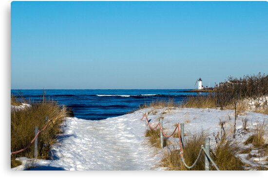Snowy Path to the Beach by Monica M. Scanlan