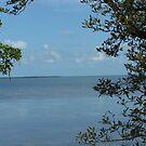 Tavernier  Water View by DianaTaylor/ JacksonDunes