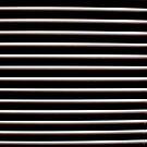 The White Stripes by Josh Prior
