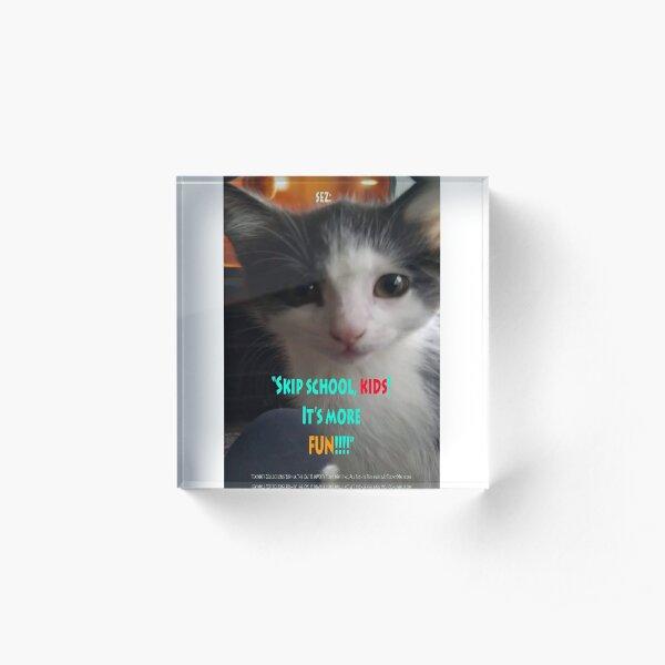 Sophia The Cat # 4 [Tex's Owner] Acrylic Block