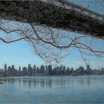 New York Triborough Bridge  by Almdrs
