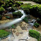 Shallow Water 3 by Michael Treloar