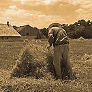 Preparing Wheat for Thrashing by ECH52