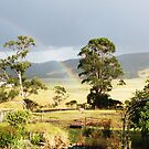 Rainbow in the Valley by Kay Coates