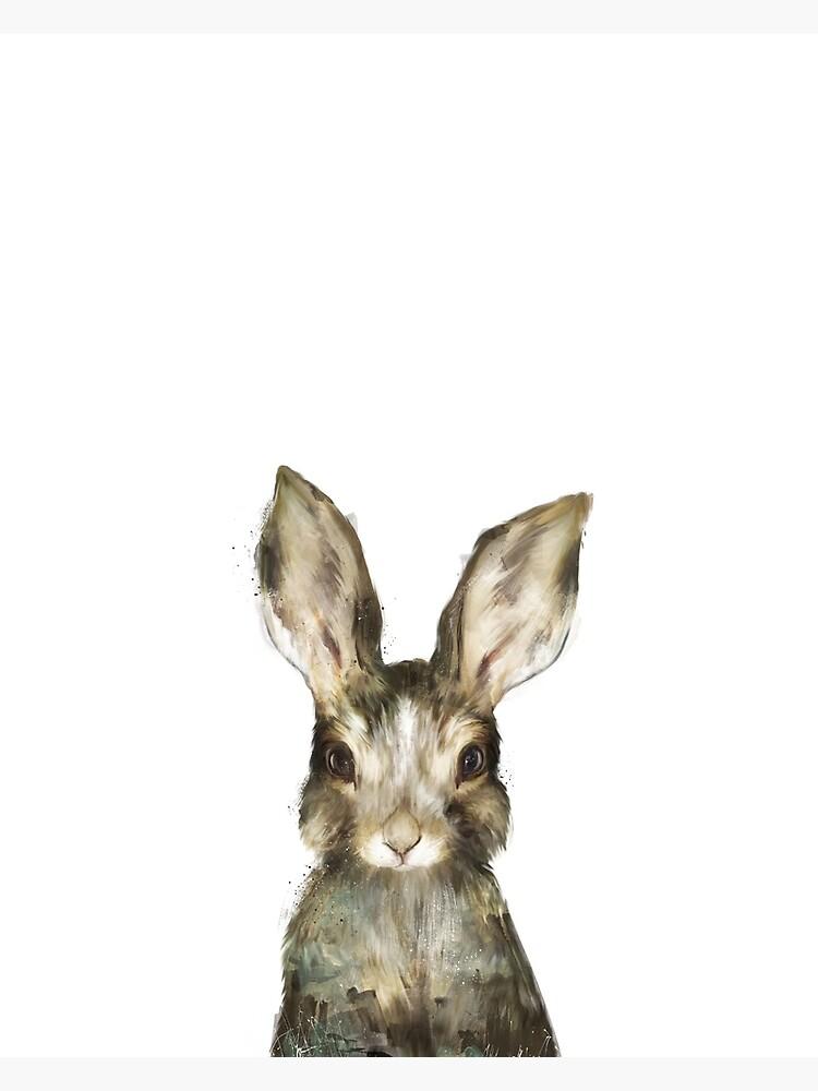 Little Rabbit by AmyHamilton