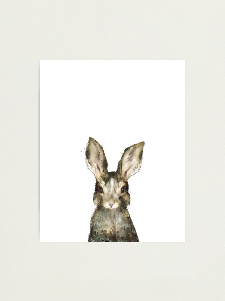 Alternate view of Little Rabbit Photographic Print