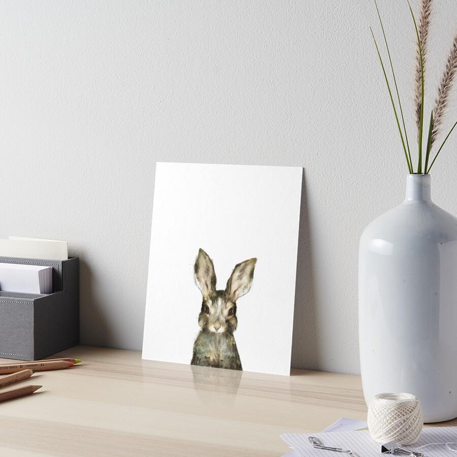 «Pequeño conejo» de Amy Hamilton
