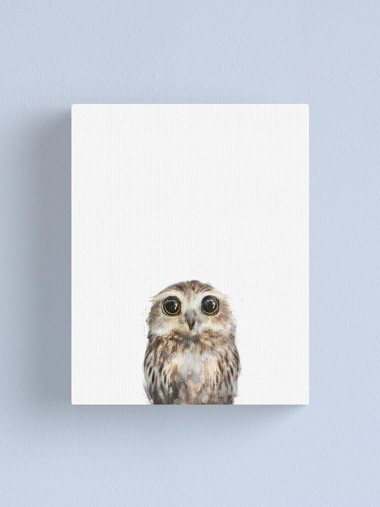 Alternate view of Little Owl Canvas Print