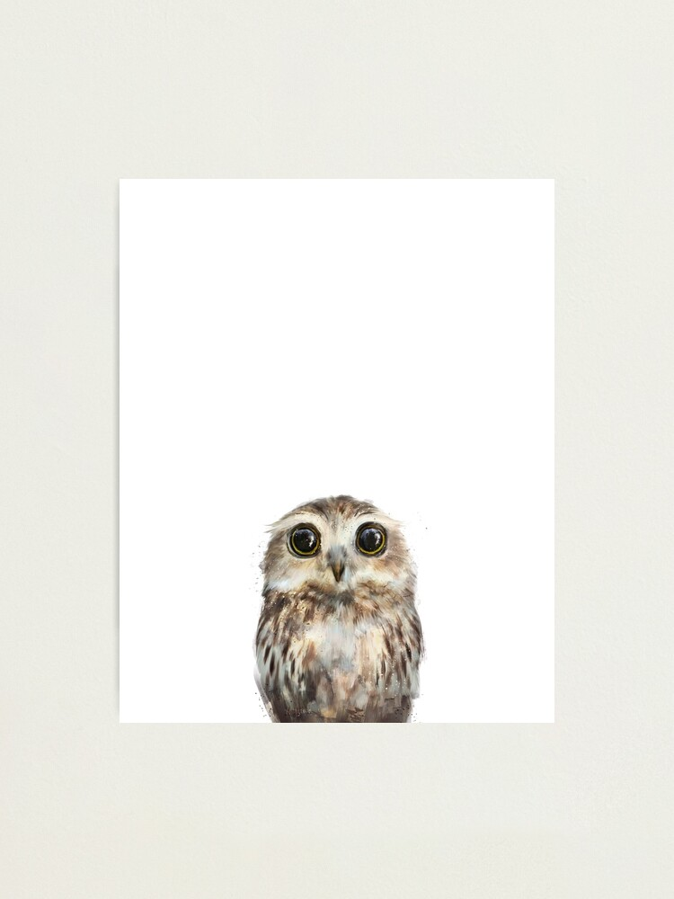 Alternate view of Little Owl Photographic Print