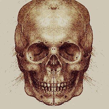 Leonardo Da Vinci Skull by fredseghetti