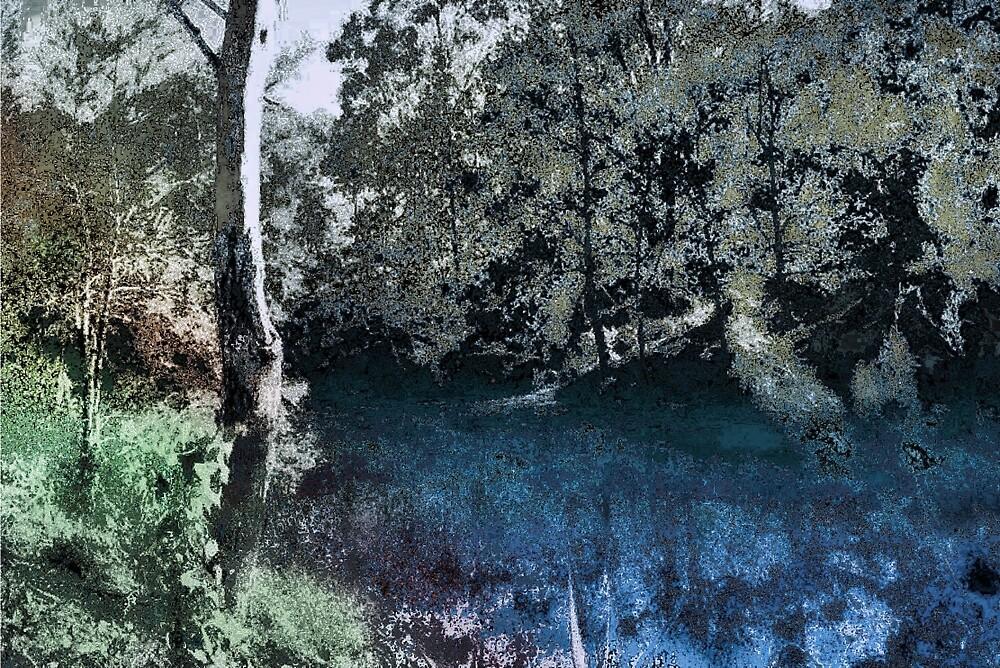 I love the Aussie bush. by Albert