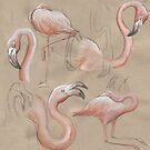 Flamingos by SnakeArtist