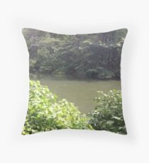 Central Park in Spring Throw Pillow