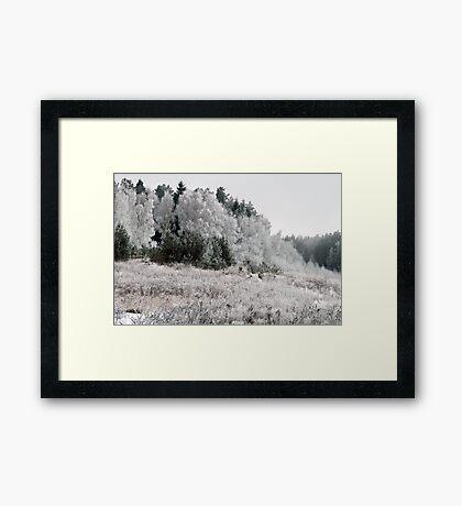 Frosted Landscape Framed Print