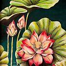 Lotus Flowers by Julie Ann Accornero