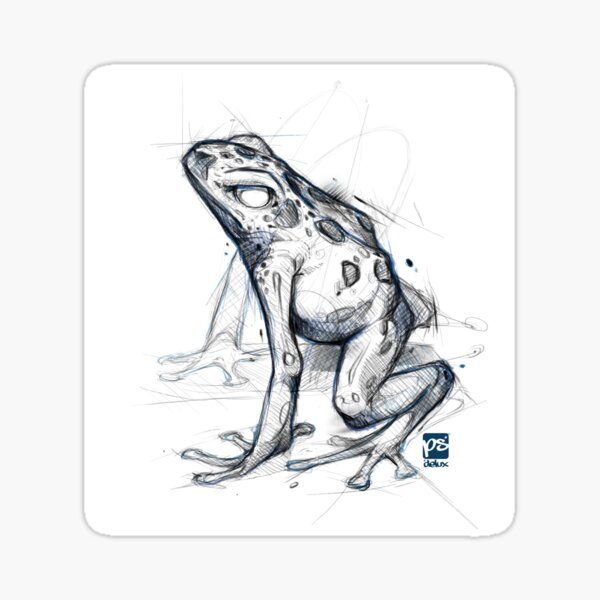 poison dart frog sketch Sticker