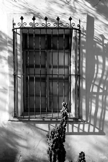 San Xavier Window and Shadows 2 BW by marybedy