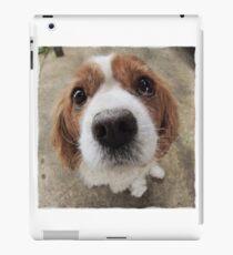 Wilson iPad Case/Skin