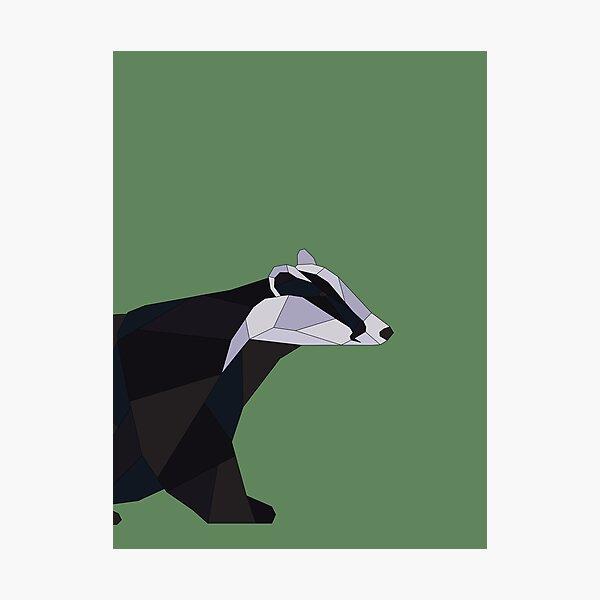 Geometric Badger Photographic Print