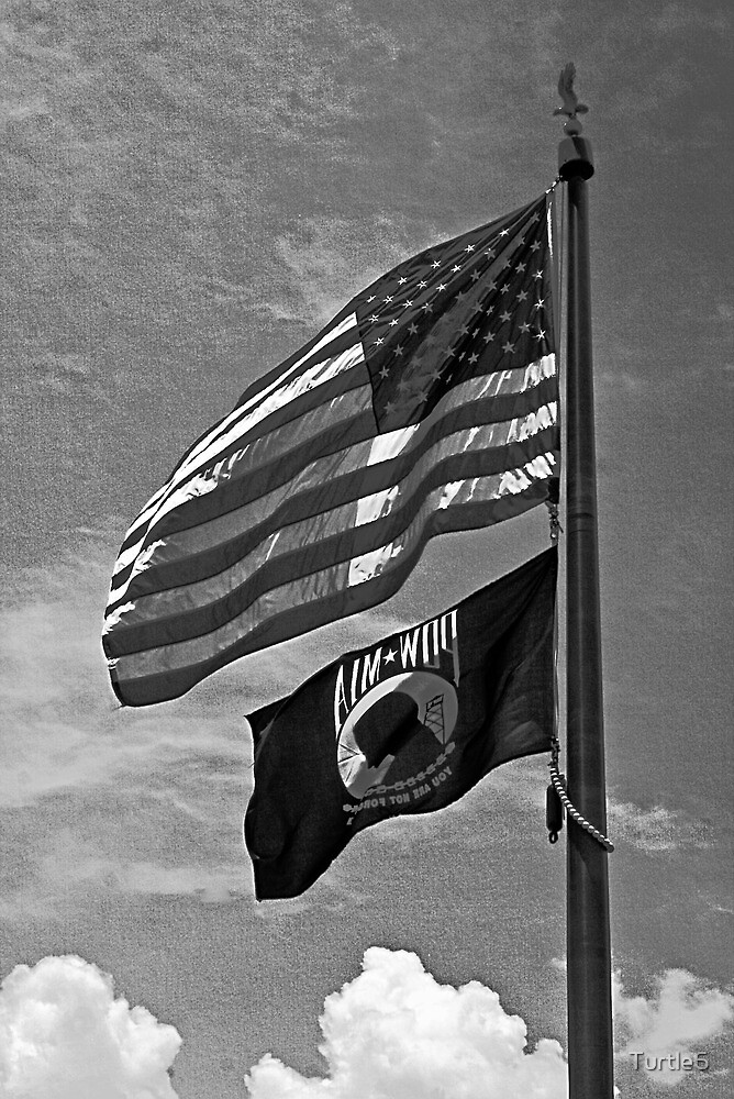 US Colors and POW/MIA Flags by Turtle6