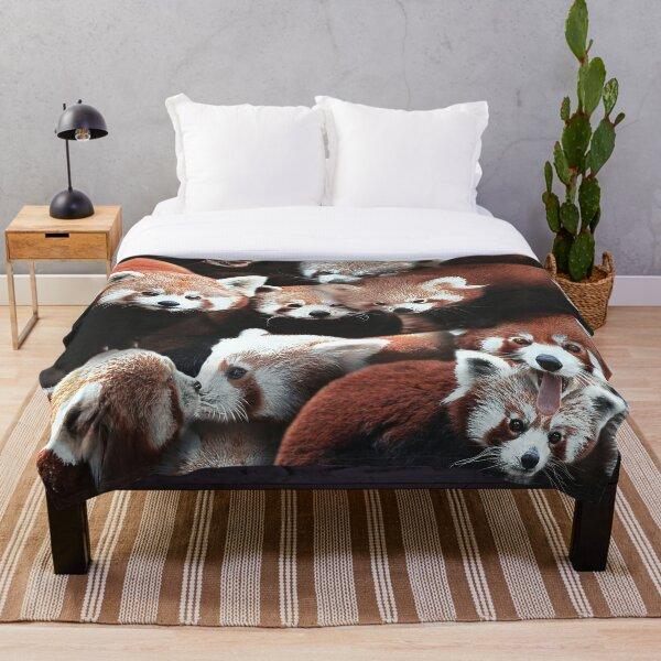 Pandas Rouges Plaid