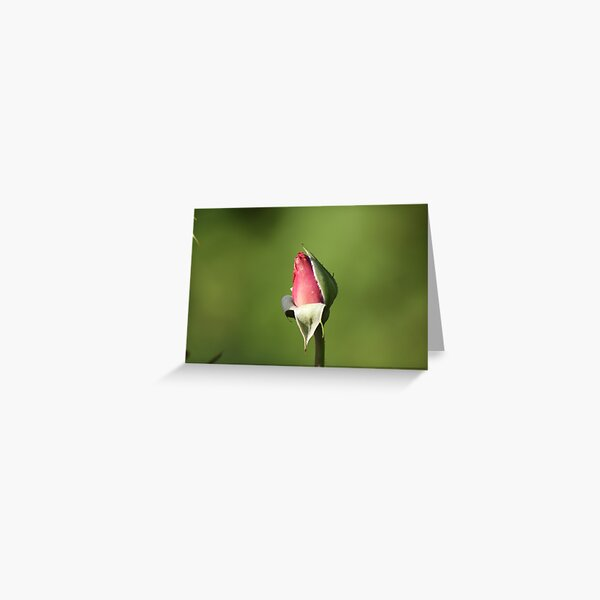 Yet to Bloom Greeting Card