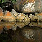 Tidal River Rocks by Mark Higgins