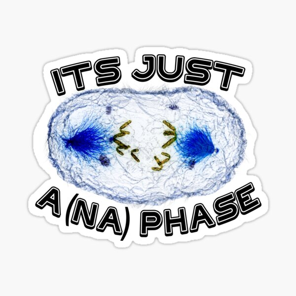 It's Just A (na) Phase Sticker