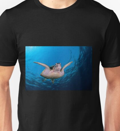 Green Turtle, Sipadan, Sabah, Malaysia T-Shirt