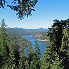 Lake Coeur d' Alene, Idaho by Barb White