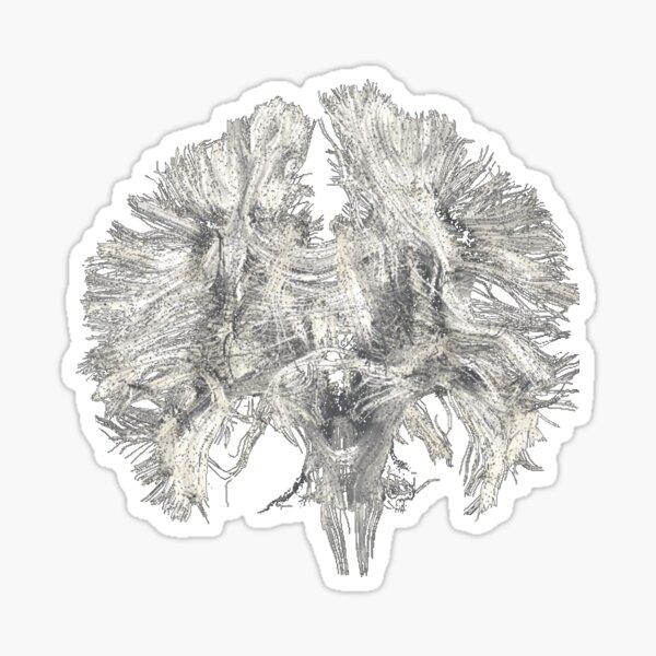 Grey Brain Sticker