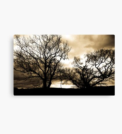 In the Bleak Mid Winter Canvas Print