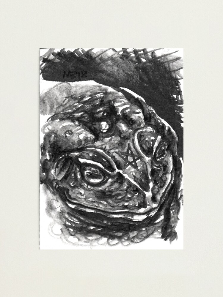 Alternate view of Familiars - Toad Photographic Print