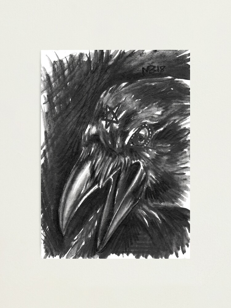Alternate view of Familiars - Rook Photographic Print