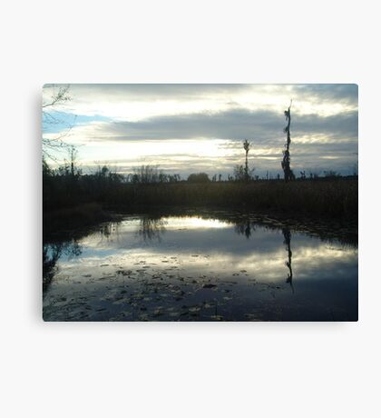 Cold Afternoon Canvas Print