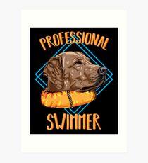 Lámina artística Labrador | Nadador profesional